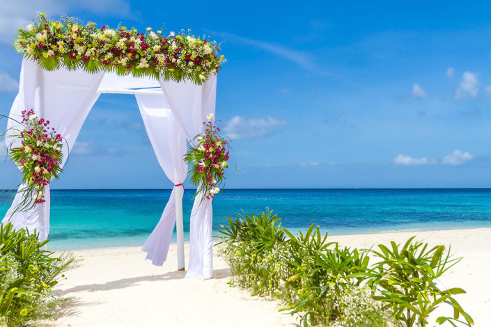 Cocoon - Beach Wedding